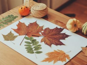 15 fun & engaging Thanksgiving crafts for preschoolers