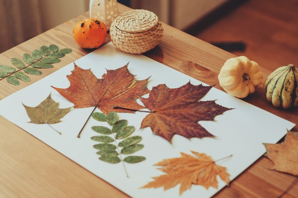pinterest fall crafts 15 amp engaging thanksgiving crafts for preschoolers 2694