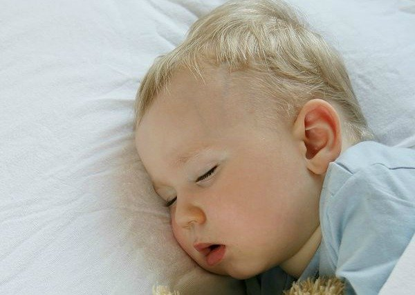 Sleep and Feeding Schedules