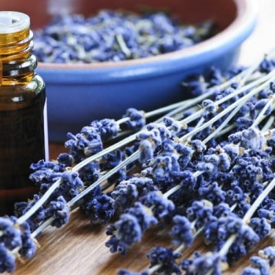 The Best Essential Oils for Stress