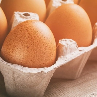 Fun with Science: 15 Egg Experiments For Kids