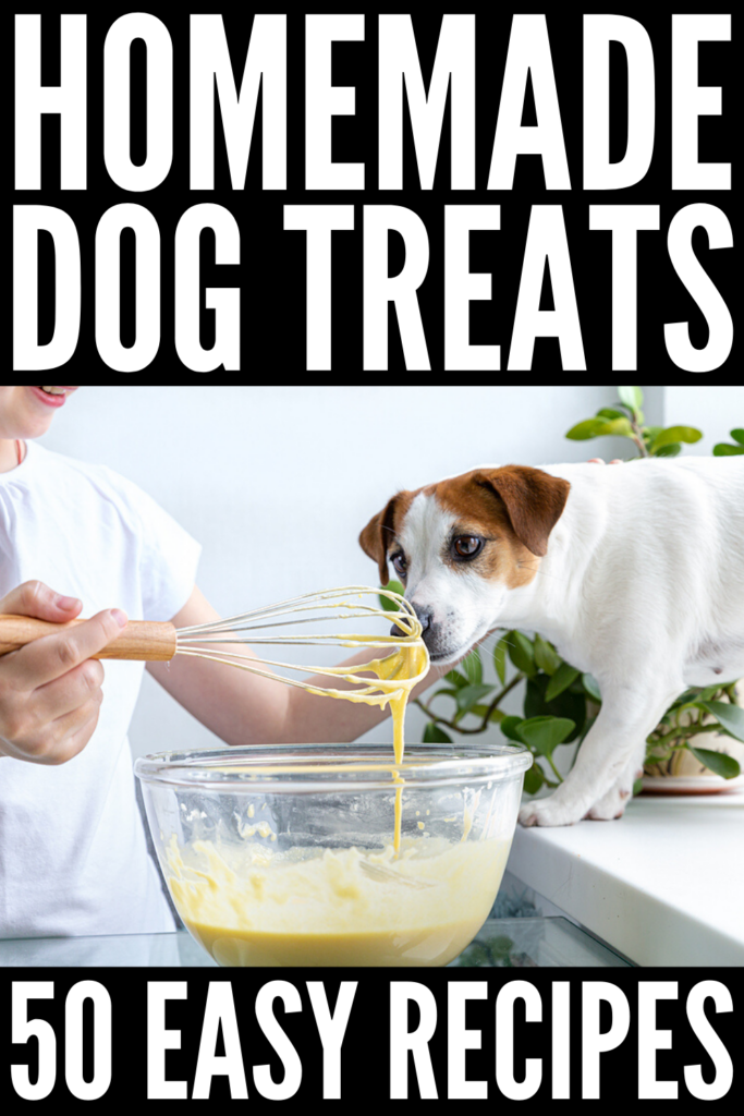 50 Healthy Homemade Dog Treats | If you're looking for easy dog treat recipes made from natural ingredients, we've curated the best of the best! From homemade dog treats with peanut butter, to easy no bake dog treats, to grain free dog treats, to frozen dog treats, to soft dog treats, this collection of dog food recipes will teach you how to make the best treats for your pup!