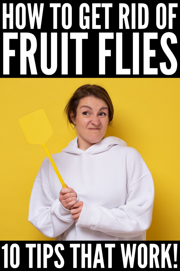 How to Get Rid of Fruit Flies | If you're looking for tips and hacks to help prevent and get rid of fruit flies, this post will teach you how to trap them, and how to get them out of the house once and for all! Catching fruit flies is a cinch with our DIY traps using apple cider vinegar, dish soap, and fermented fruit, and our DIY alcohol spray is a great natural repellent. Whether fruit flies are in your kitchen or in drain sinks, these home remedies for fruit flies will banish them for good!