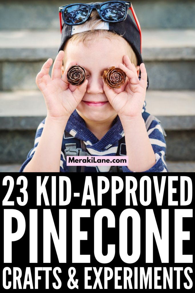 23 Pinecone Crafts and Experiments for Kids | While pinecones are abundant in late fall and early winter, they are the perfect material for crafts and projects year round - even in spring and summer! Whether you're making decorations for Halloween, centrepieces for Thanksgiving, or wreathes and ornaments for Christmas, this post has tons of ideas to inspire you. We've also included ideas that are not holiday specific and that are perfect for all ages and stages!